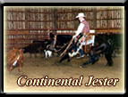 Click here for Continental Jester (King grandson, son of Continental King), Cutting Horses at their best (COA)! Born 1981, died 2006 at 25 years.